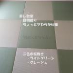 琉球畳東レ敷楽 目積織り 半畳二色市松敷き(LG,GG)